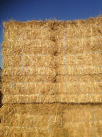 Wheat straw. Straw bales small squares of wheat straw 21 bundles