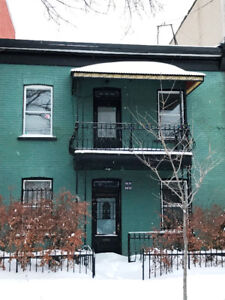 Maison a louer  (la Petite-Italie) en face du parc de Gaspé