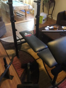 Weider Training System 146 - Black - with 2 Weights