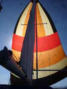 Spinnaker pole and spinnaker -located Tuscany N.W