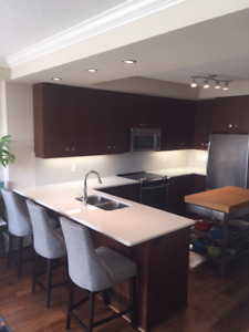 Fully furnished one bed + den Downtown Guelph