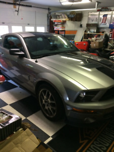 2009 Shelby GT500 Mustang