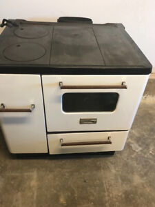 Enterprise wood stove with hot water system