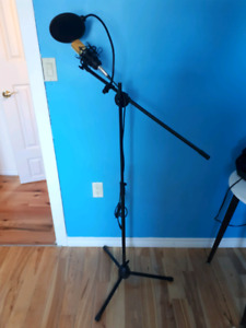 2 Matching Mic Stands and Mics Forsale
