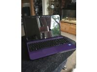 HP purple laptop netbook computer pc intel core i3 Doncaster South Yorkshire windows 8 iPad