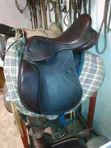 Santa Cruz GP. Saddle