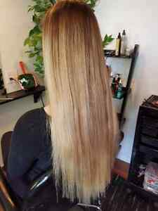Hair Extentions Highlights & Colours Belleville Belleville Area image 6