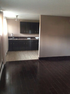 Newly renovated 2 bedroom basement suite Strathcona County Edmonton Area image 7