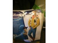 Toy story woody costume adult
