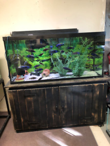 90g Fish Tank with Beautiful Wood Stand, Glass Lids and Light