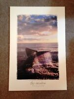 The Rainbow - Whale Tale Mounted Poster