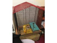 Boy gerbil comes with cage