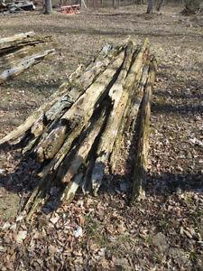 Cedar Fencing Belleville Belleville Area image 2