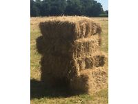 Hay for sale ~ Fresh Organic Park Hay