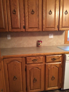 Kitchen cabinet doors, pantry, counter tops, ceiling fans