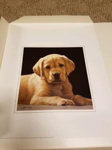 Pick of the litter  signed print. 943/1250.  John Weiss 8.5x8.5