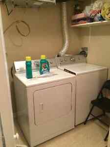 nice clean room for rent now St. John's Newfoundland image 6