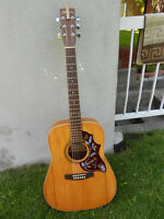 ensemble guitare Norman B20 et Pod line 6 Ux1 et plus negosiable