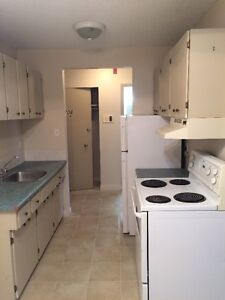 One Bedroom Apartment  with incentive for one year lease