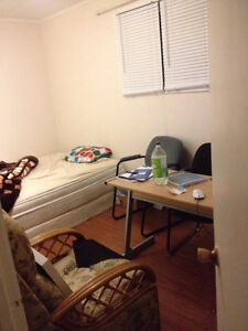 1 room for rent, 390 all inclusive