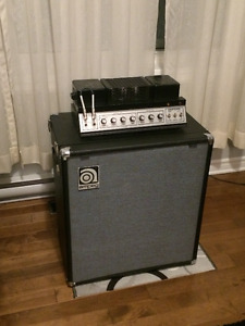 Ampeg b-15 vintage (Best tax refund gift Ever) (négociable)