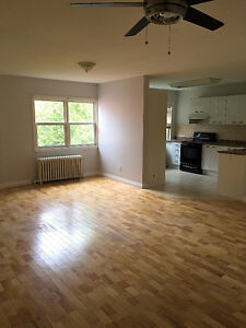 Large Bright 4 1/2 for Rent in Dorval