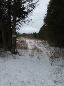 19 Estate Lots Newtonville