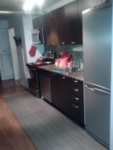 Furnished 2 bed, Queen West, Downtown Toronto