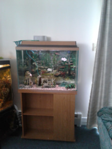 FISH TANK AND STAND, 40 GALLON
