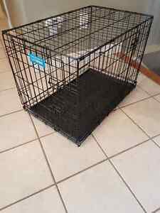 Foldable Dog Crate with divider