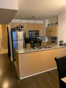 Den for rent in a 1+Den in Cityplace