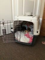 Small dog/ cat carrying crate