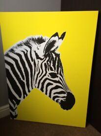 Modern Zebra Canvas Picture