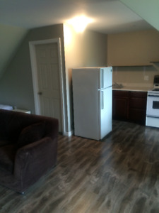 Fully Furnished Bachelor Apartment for Rent