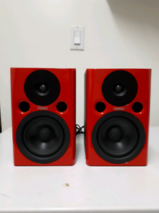 Fostex studio moniters