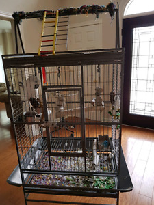 Large Playtop Bird Cage and Stand