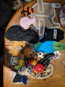 Small dogs clothes, toys and accessories