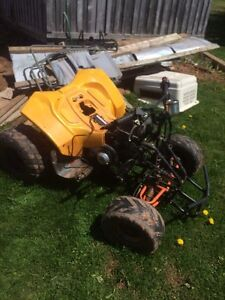 Wanted someone to get Chinese quad running