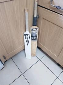 Cricket bads