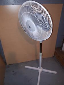 Osilating 3 speed fan