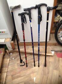 4 walking sticks
