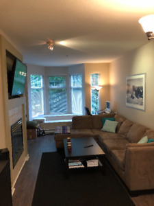 Spacious 1 bedroom/1bath for rent in New Westminster