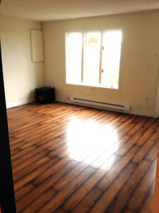 Incredibly Affordable & Cozy Saltbox Home! St. John's Newfoundland image 6