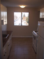 Spacious 2 Bedroom Close to West Edmonton Mall