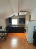 1 bedroom duplex unit for rent in Dryden, newly renovated !!!