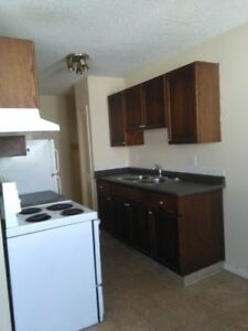 Two bedroom apartment for rent at 10630-111 Street Downtown