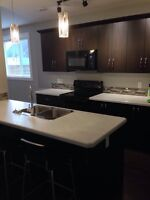 Lower Level Suite for Rent, Move-in Ready!