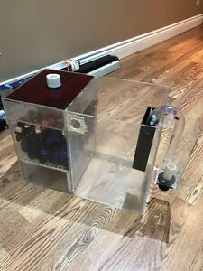 Salt water sump and overflow box