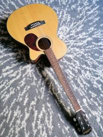 Freshman FA1AN Electro Acoustic RRP£379