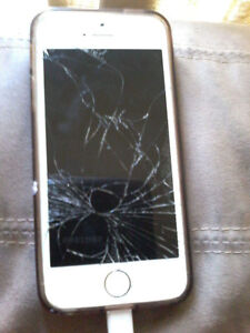 iPhone 5s (in perfect working condition)